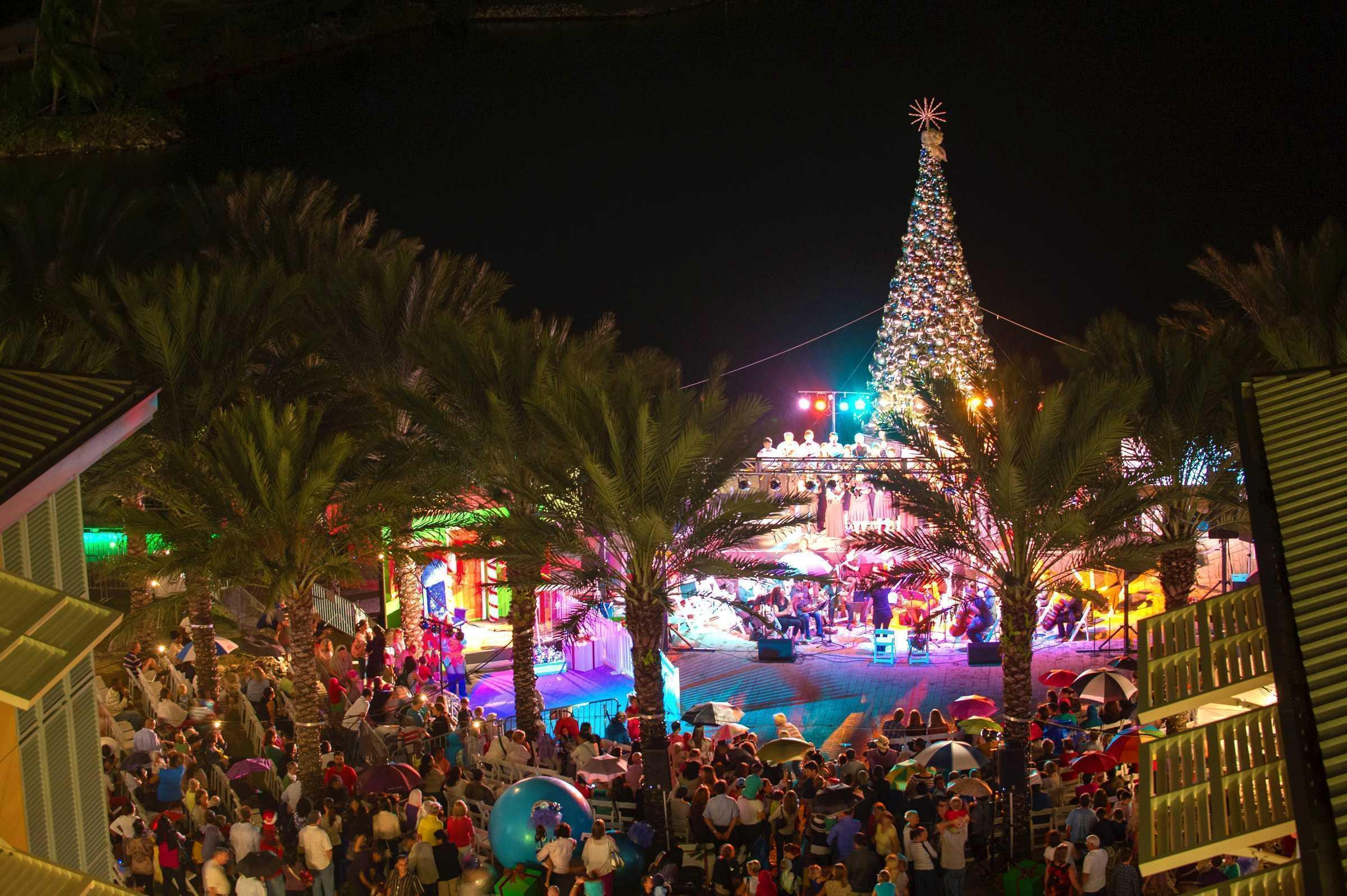 Christmas Tree Lighting Camana Bay